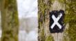 Ретаргетинг в Яндекс.Директе: от основ до анализа эффективности